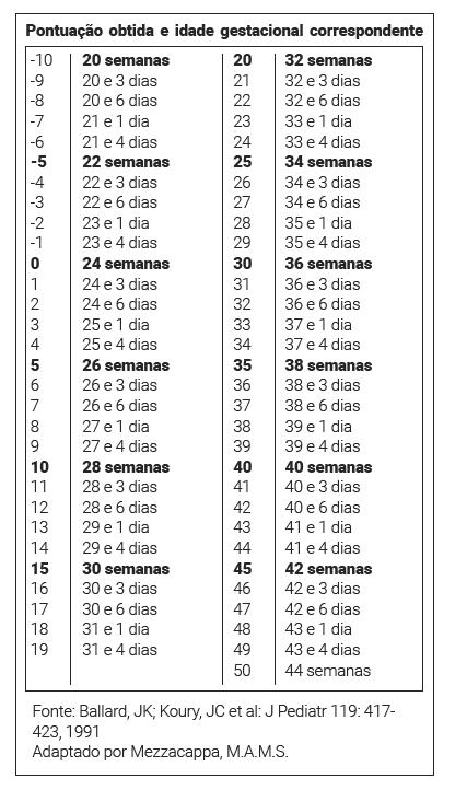 02-04-tabela3